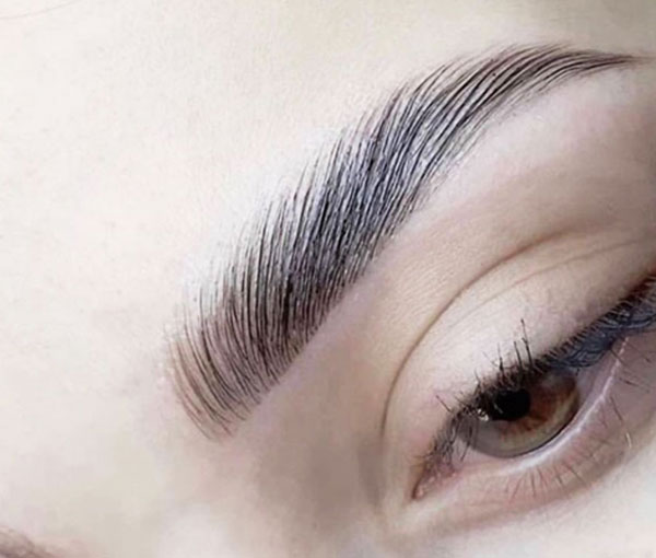 Eyebrow Lamination 4